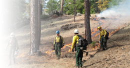 Mendocino National Forest Resource Advisory Committee by Roberta Hurt